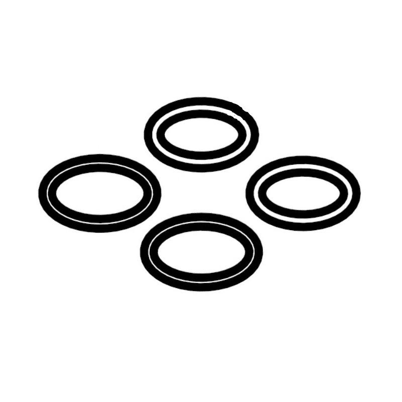Kit juntas tóricas + junta para el porta-sondas P19 R0830700 pH Link / Dual Link Zodiac