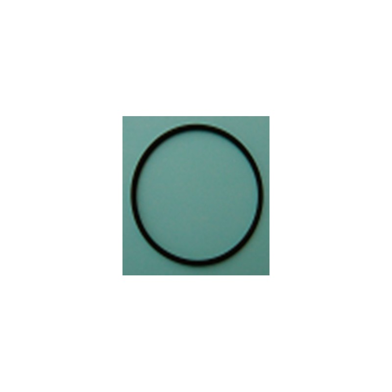 Junta tórica 58x2,5 (Filtro F20) Analyt de Bayrol