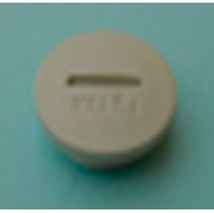 Tapón PG 13,5 portaelectrodos de Bayrol