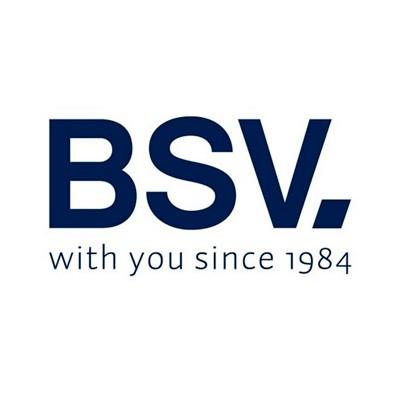 Reguladores BSV